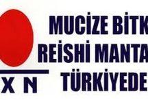 DXN ÜRÜNLER - DXN İOC Türkiye 0850 808 26 76