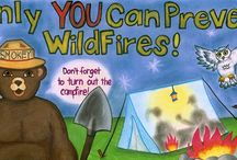 Wildlife Science Activities for Kids and Teens / Wildlife science learning activities for children and teenagers.