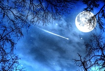 Fly me to the moon .... / by Christine Mackenzie