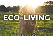 Eco-living / Embrace your most organic self.