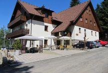 Pension Alpský dům,K Samotám  447,Železná Ruda