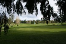 Golf Courses in Cowichan Valley, BC / Golf courses located in the Cowichan Valley. Communities include Duncan, Mill Bay, Cowichan Bay, Lake Cowichan & Chemainus.
