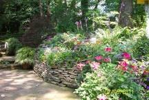 Fine Gardening Gpod Fggpod Op Pinterest