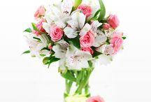 Flower Gifts / Gift a loved one with a beautiful, themed bouquet twelve times a year with our Flower of the Month Club! See our collection of flower gifts at http://www.greatclubs.com/flowerofthemonthclub/. / by Clubs of America