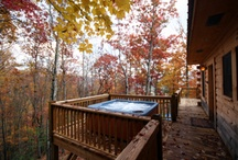 Autumn / Gorgeous Autumn colours in your garden or patio. With a bit of a chill in the air, how better to warm yourself up than jump in your Artesian Hot Tub Spa www.ocspas.co.uk