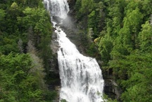 Waterfalls / Western North Carolina offers some of the most gorgeous waterfalls in the world.  We have information on them as well as the hiking trails to get there and even secret spots to get the best view of the falls.