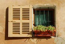 Door and Window Ideas