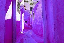 Colour purple   Kleur paars