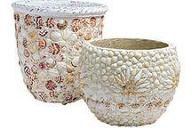 Seashells craft