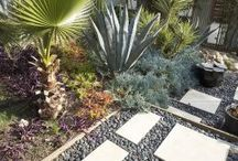 Landscape Ideas / by Brooke Black Just-Olesen