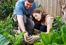 -jardinagem