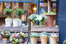 New flower shop