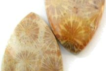 CORAL - Fossil Coral Beads, Fossil Coral Cabochons, Fossil Coral Handmade Jewelry