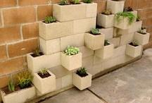 Compact garden ideas
