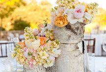 Wedding Ideas / by Allie Smith
