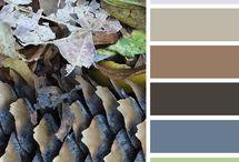Inspiracja-kolory