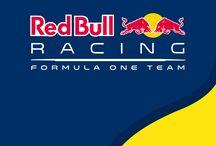 Redbull Racing team