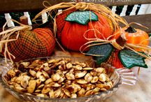 Fall Fun / cool weather and colorful leaves / by Traci B KY