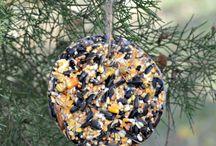 home made bird feeders
