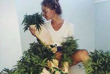 A L L / Home decoration, food, inspirations pics, weed and many more ..