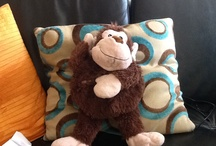 Monkey / So cute