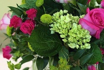 Autour des fleurs et du jardin