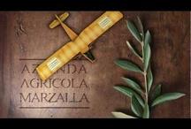 Marzalla Azienda Agricola / Azienda Agricola Pescia, Italy