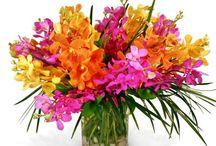 Everyday Florals / Custom flower arrangements found on www.frugalflower.com