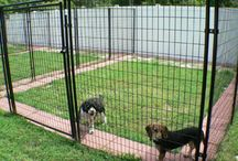 Dog Kennel Ideas...