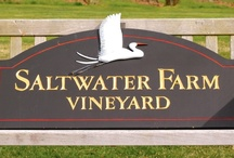 Saltwater Farm Vineyard / by Connecticut Food & Wine