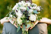 Wedding / by Amanda Hart