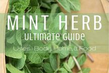 Gardening - Herbs & spices / all about growing & harvesting herbs and using them...