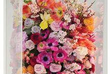 GOOD Inspiration: Florals