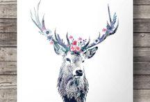 Oh My deer!!!