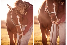 Horses / by Taylor Rae