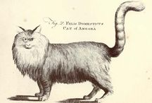 Cats in Ilustrations at The Great Cat / www.thegreatcatblog.com