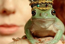 Frog ... Fables ;-)