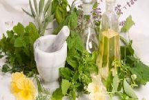 nutrition and herbs / by Angela Unbehaun