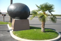 roadside attractions / by Ron Moyers