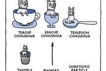 Four Eyes Cartoons