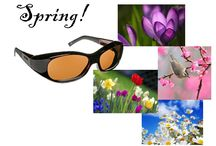 """Spring  - Time to wear sunglasses! / """"Spring shows what God can do with a drab and dirty world.""""  ― Virgil Kraft"""