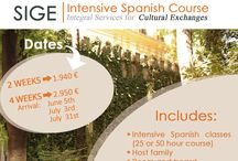 SUMMER PROGRAMS/Intensive Spanish Courses /  The best way to master a language is to be in an environment where you can apply what you learn, and what better way to improve your Spanish language skills than by immersing yourself in a vibrant Spanish city for two weeks or even better, a month! You will receive intensive Spanish classes for two and a half hours a day in Seville, the largest city in the region of Andalucía.