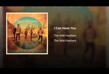 The Wild Feathers / The Eagles of the 21st Century