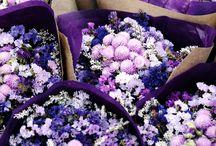 Flores para mi