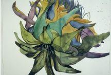 Art botanical - Sarah Graham