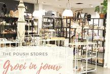 Poush | Blog