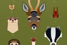 Wildlife poster ideas for yr 7