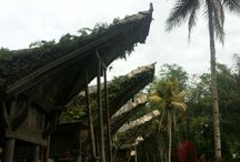 tradisional house