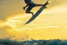 ~ Surf ~
