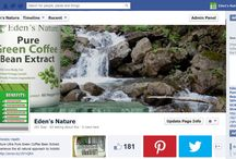 Eden's Nature Social Media / Eden's Nature can be found featured on various social media platforms including Tumblr, Twitter, Facebook, Google+ and Pinterest. Eden's Nature can also be found on Wordpress and Youtube and will be featured on this board.